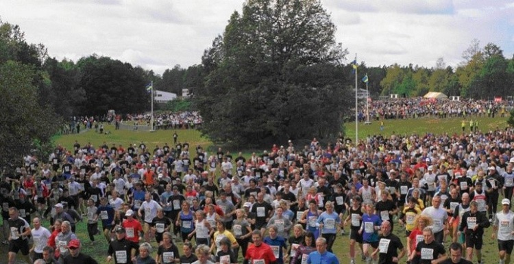 large crowd of joggers in a park