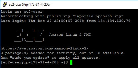 Connect to the AWS EC2 instance using PuTTY: Log in