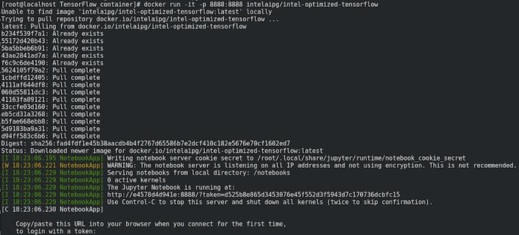docker run 8888 result example
