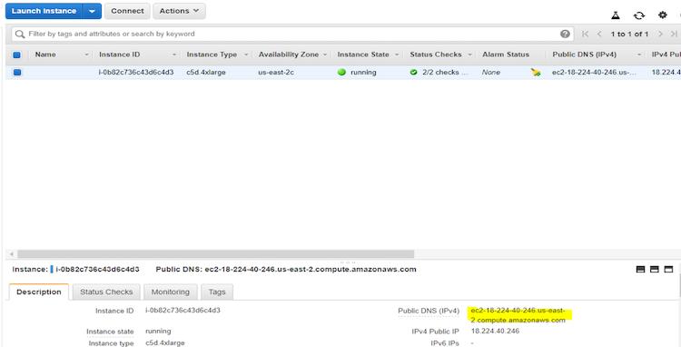 find and copy public DNS screenshot